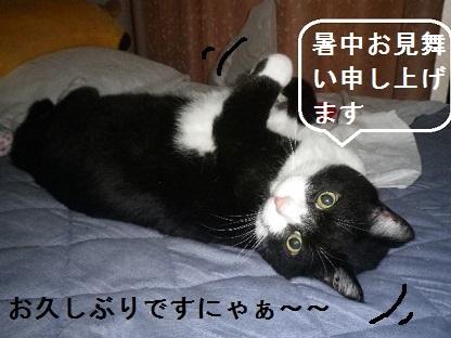 031 ブログ。。。ペコちゃん.jpg