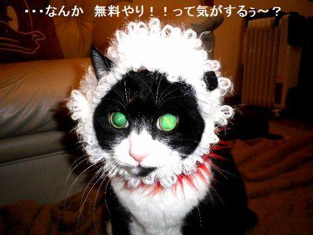 062 BUROGU なんか無理やり?.jpg