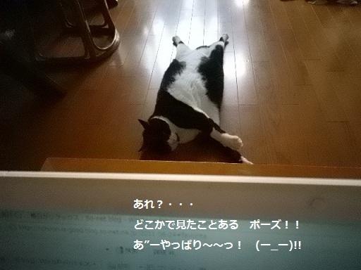 いつもの・・・ポーズ.jpg