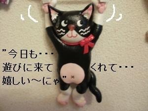 カステムペイン!!牛猫.jpg
