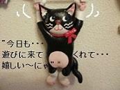 カステムペイン!!牛猫~!!.jpg