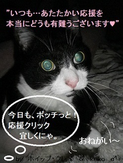 ブログ更新!!(='x'=)お願い~!!.jpg