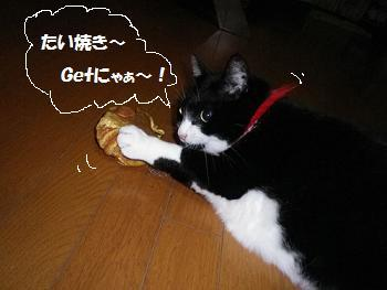 ペコちゃん たい焼きGet!mm.jpg
