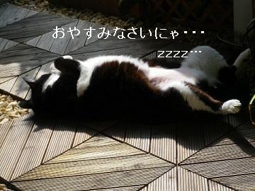 ZZZ・・・.jpg